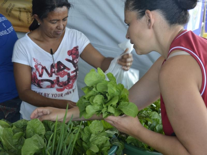 """Barraca de hortaliças orgânicas no """"2º Ruas de Lazer – Projeto Dist/Shopping Park, no dia 16/7 (foto: Marco Cavalcanti)"""